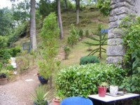 French property for sale in SERVANT, Puy de Dome - €189,000 - photo 9